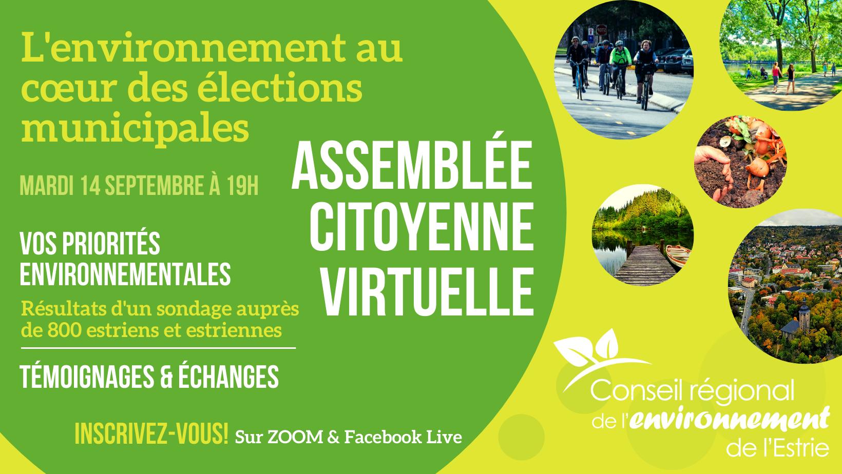 Virtual citizen's assembly